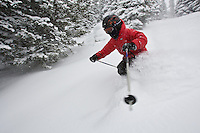 An 8 year old boy skiing somewhere in the trees of Jackson Hole, Wyoming on a fresh powder day.