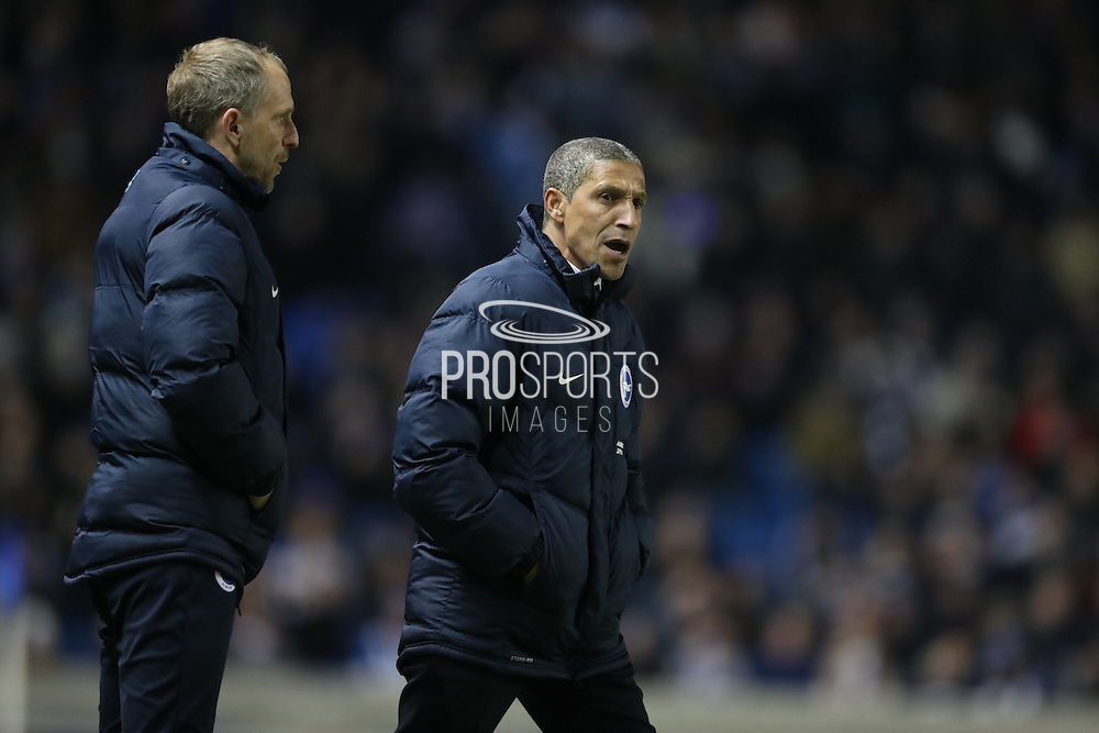 Brighton Manager, Chris Hughton and Brighton Assistant Manager, Paul Trollope during the EFL Sky Bet Championship match between Brighton and Hove Albion and Sheffield Wednesday at the American Express Community Stadium, Brighton and Hove, England on 20 January 2017.