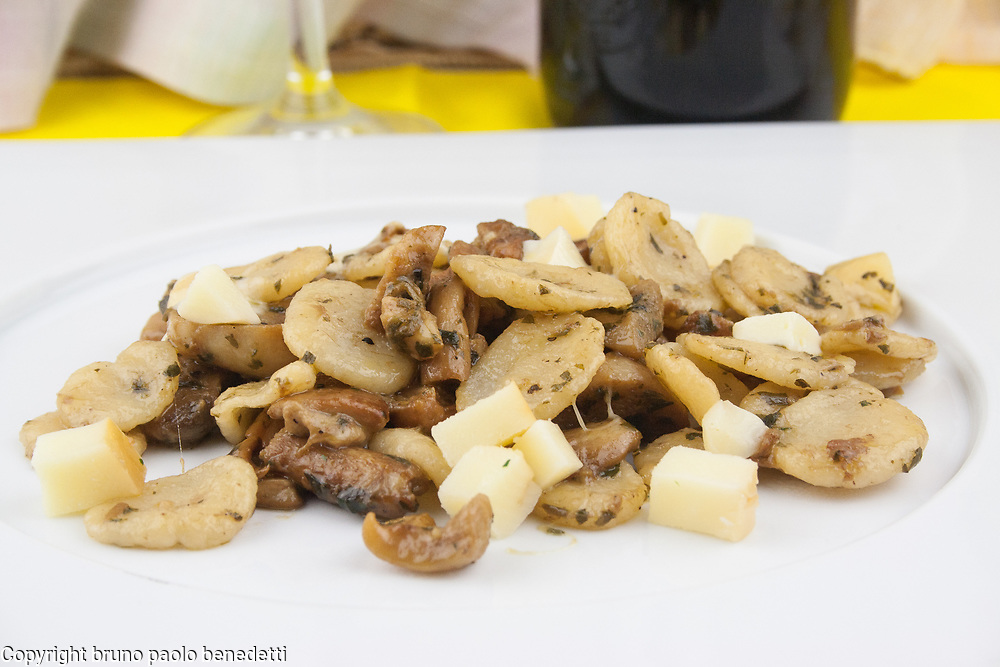 orecchiette pasta with porcini mushrooms and scamorza cheese sauce side vew close-up on white dish and red wine and veil on blure background,  italian food