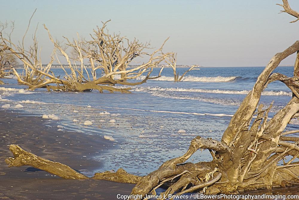 Botany Bay Plantation Beach