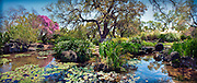Los Angeles County Arboretum - Arboreta and Botanic Gardens in Arcadia, CA