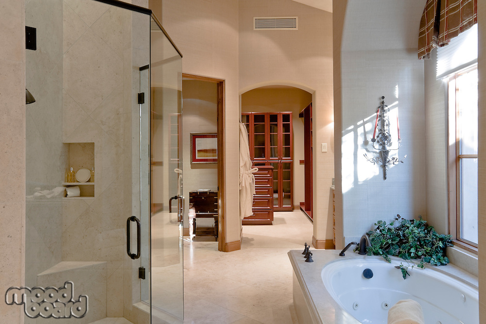 Bathtub with glass door in bathroom of luxury manor house