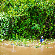 THA/Chiang Mai/20160731 - Vakantie Thailand 2016 Chiang Mai, Thaise visser in de rivier