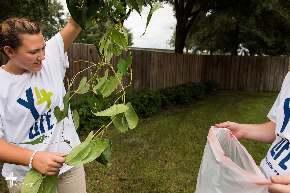 "Y4Life student volunteers Georgiana ""Maddie"" McLoren and Lawton Springfield remove overgrown vegetation at Redeeming Life Maternity Home during a servant event on Saturday, Sept. 12, 2015, in Sanford, Fla. LCMS Communications/Erik M. Lunsford"