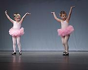 Gnomes Dance