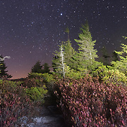 Starry Sky. Dolly Sods Wilderness. Tucker County, West Virginia.