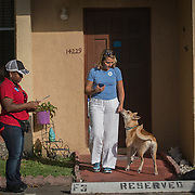 NORTH MIANI, FLORIDA, NOVEMBER 8, 2016<br /> Move On volunteers Francie Peake, right, and  Nelzenna Andrews  knock on doors of homes of voters in the North Miami area as they canvass for democratic votes.<br /> (Photo by Angel Valentin/Freelance)