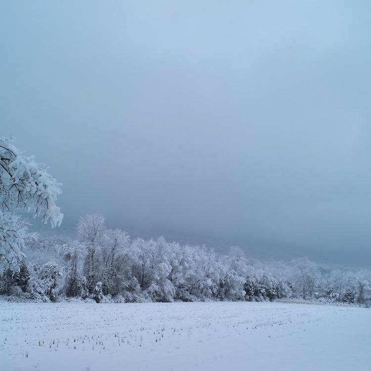 Field, Shenandoah Road, Dutchess County, New York.