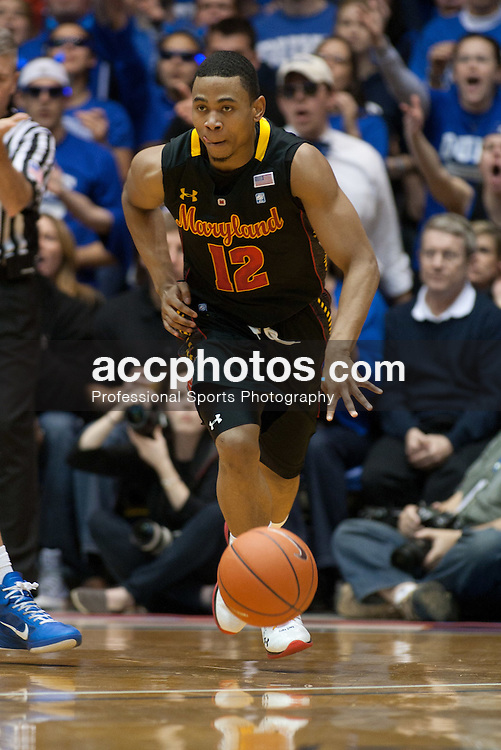 DURHAM, NC - JANUARY 09: Terrell Stoglin #12 of the Maryland Terrapins dribbles the ball while playing the Duke Blue Devils on January 09, 2011 at Cameron Indoor Stadium in Durham, North Carolina. Duke won 71-64. (Photo by Peyton Williams/Getty Images) *** Local Caption *** Terrell Stoglin