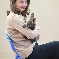 Lauren Wood | Buy at photos.djournal.com<br /> Principal Christy Carroll holds a joey kangaroo as Bob Tarter with the Natural History Educational Company of the Midsouth talks to students about animals of the desert Thursday morning at Carver Elementary School.