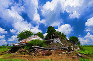 Rural landscape in Pitt County, NC, with another barn tumbled down among a field of tobacco and billowing clouds