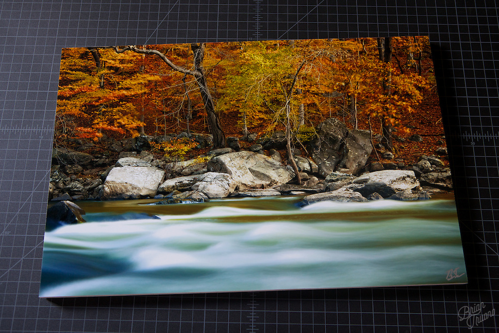 &quot;Autumn Along the Banks&quot; at 24&quot;x16&quot; metallic paper, mounted to maple plywood.<br /> <br /> http://www.btruono.com/image/I0000cgg2JSGppDw<br /> <br /> Please contact me for custom sizes and frames:<br /> http://www.btruono.com/#!/contact