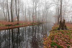 Landgoed Spanderswoud, 's-Graveland, Wijdemeren, Noord Holland, Netherlands