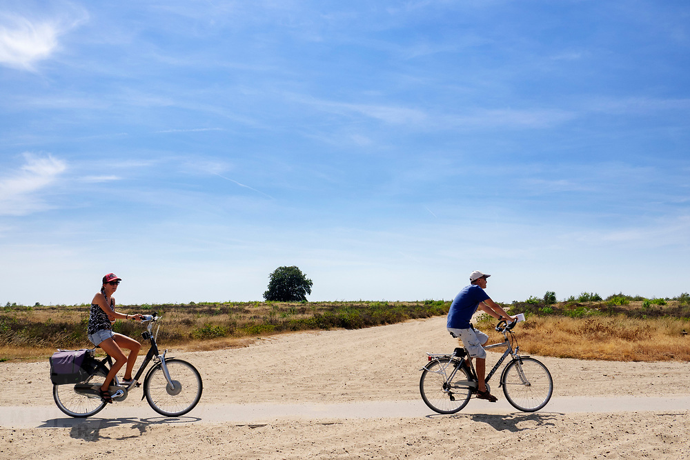 Nederland, Ede, 27-07-2018<br /> Fietsers rijden bij Ede over de Ginkelse Heide op de Veluwe.<br /> <br /> Cyclists ride near Ede at the moorland on the Veluwe.<br /> Foto: Bas de Meijer / De Beeldunie