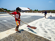 28 MARCH 2018 - SAMUT SONGKHRAM, SAMUT SONGKHRAM, THAILAND: Workers rake dried salt into rows during the 2018 salt harvest in Samut Songkhram, about 90 minutes south of Bangkok. Sea salt is made in provinces south of Bangkok by flooding fields with ocean water after the rainy season. As the fields dry out from evaporation, workers go into the fields and gather the salt left behind.   PHOTO BY JACK KURTZ