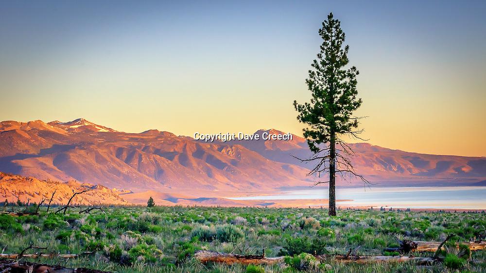 Sunrise overlooking Mono Lake