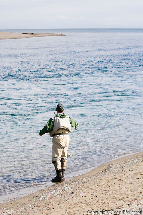 A flyfisherman fishing for Bristol Bay sockeye salmon in the Kvichak River where it drains the Iliamna Lake.