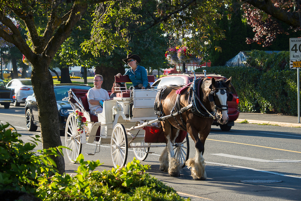Canada, British Columbia, Vancouver Island, Victoria, horse drawn carriage