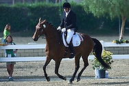 SO Ireland athlete John Deevy with horse called Rappi competes in equestrian competition during eighth day of the Special Olympics World Games Los Angeles 2015 on August 1, 2015 at Equestrian Centre Riverside Drive Burbank in Los Angeles, USA.<br /> USA, Los Angeles, August 1, 2015<br /> <br /> Picture also available in RAW (NEF) or TIFF format on special request.<br /> <br /> For editorial use only. Any commercial or promotional use requires permission.<br /> <br /> Adam Nurkiewicz declares that he has no rights to the image of people at the photographs of his authorship.<br /> <br /> Mandatory credit:<br /> Photo by © Adam Nurkiewicz / Mediasport