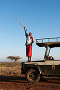 Samburu guide searching for Lions with electronic tracking system. Living with Lions GPS monitoring Program, Loisaba Wilderness Conservancy, Laikipia, Kenya.