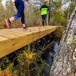 Two women run on a new boardwalk in a cedar swamp at the Witt Swamp Preserve in Norway, Maine. Fall.