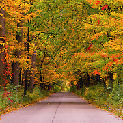 """Color Stroll""<br />
