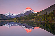 Mt. Wilbur awash in alpenglow doubles its glory as it casts a fine reflection at sunrise upon the waters of Swiftcurrent Lake in Glacier National Park on a crisp autumn morning.