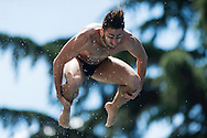 TOCCI Giovanni ITA<br /> Bolzano, Italy <br /> 22nd FINA Diving Grand Prix 2016 Trofeo Unipol<br /> Diving<br /> Men's 3m springboard semifinal <br /> Day 01 15-07-2016<br /> Photo Giorgio Perottino/Deepbluemedia/Insidefoto