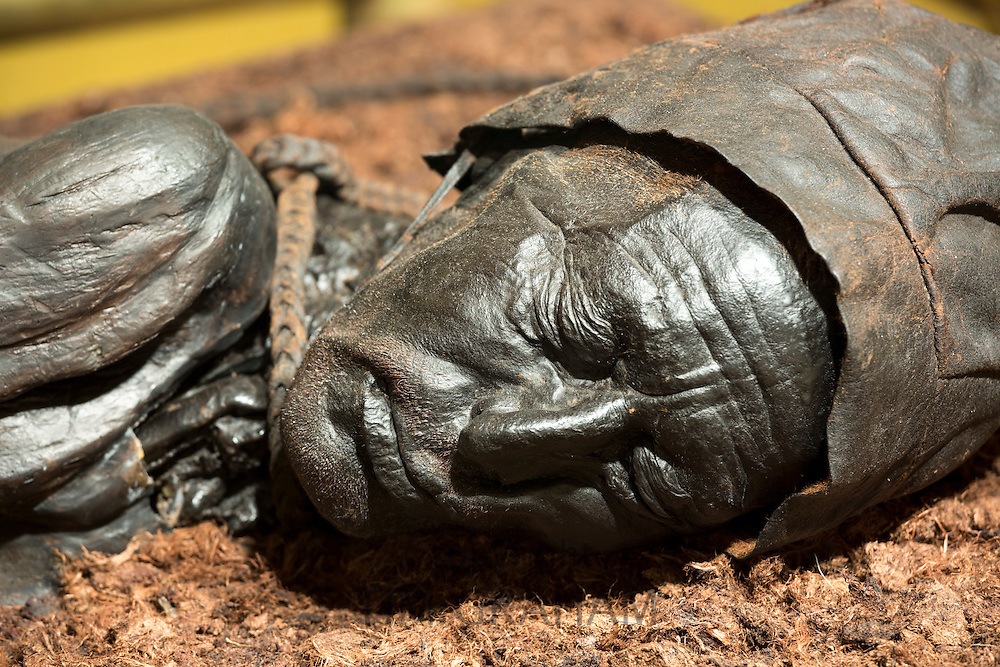 Ancient bronze statue of Tollund Man, bog body from the Iron Age, at the Museum Silkeborg in Denmark