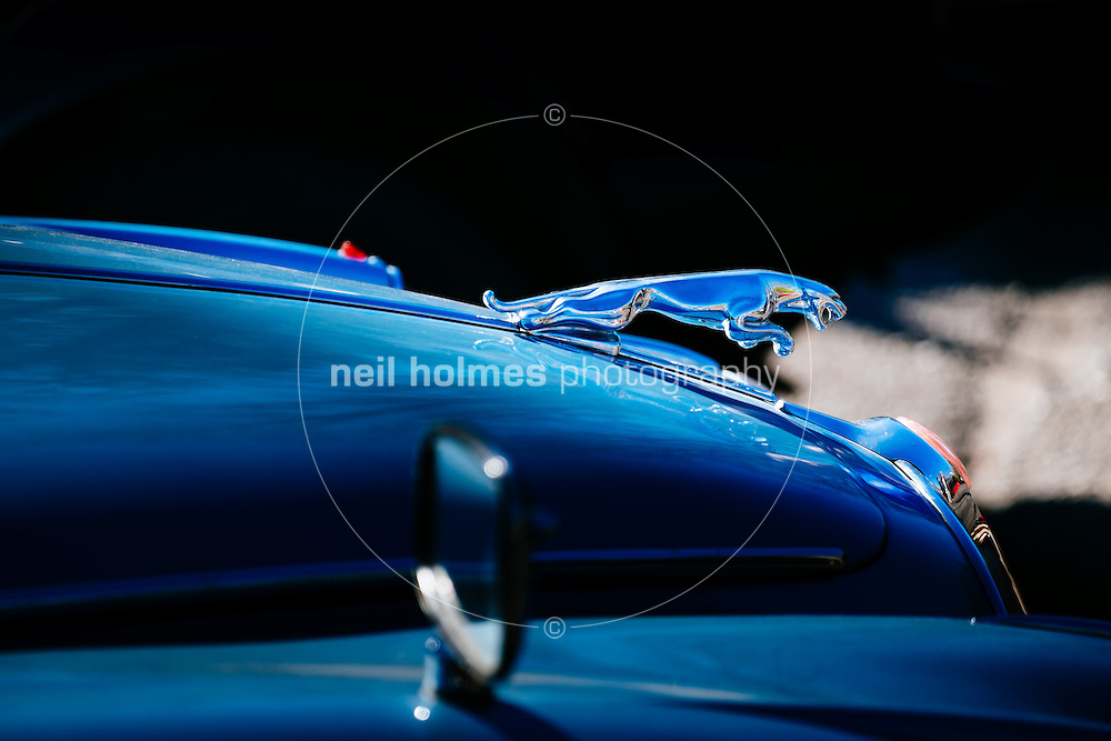 Humber Bridge, Hessle, East Yorkshire, United Kingdom, 26 April, 2015. Pictured: East Yorkshire Thoroughbred Car Club Pictured:  Jaguar