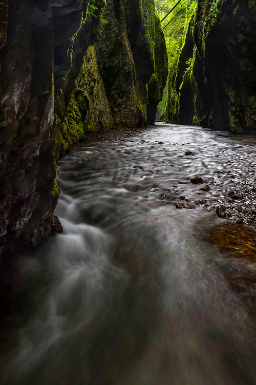 Water rushes through Oneonta Gorge in the Columbia River Gorge in the Pacific Northwest of Oregon.