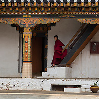 A monk descends stairs in the Punakha Dzong, Punakha, Bhutan