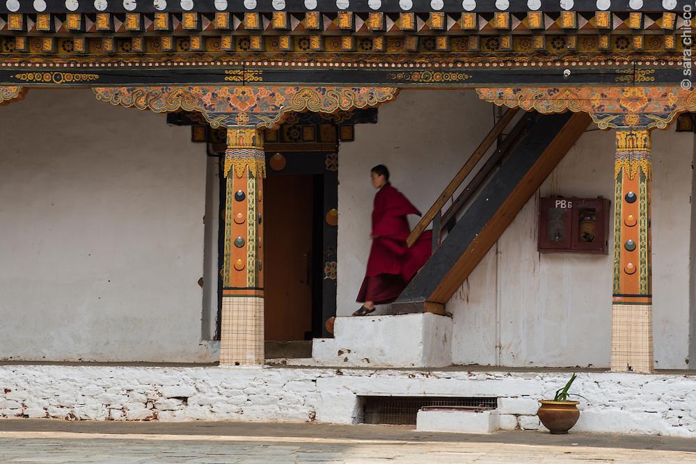 A monk descends stairs in the Punakha Dzong, Punakha, Bhutan