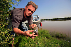 CANADA ALBERTA FORT CHIPEWYAN 21JUL09 - Greenpeace Germany campaigner Christoph von Lieven takes water and soil samples from the river Athabasca downstream from the tarsands operations in northern Alberta, Canada...jre/Photo by Jiri Rezac / GREENPEACE..© Jiri Rezac 2009