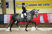 Suzan de Klein - Deja Vu<br /> Finale KNHS-Subli Kampioenschap Jonge Dressuurpaarden 2013<br /> © DigiShotsSusan de Klein - Deja Vu<br /> Subli Cup 2013<br /> © DigiShots