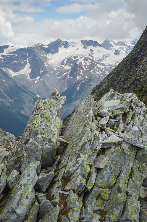 Selkirk Mountains seen from Abbott Ridge Trail Glacier National Park British Columbia