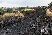 Kings trail, Koohala, Island of Hawaii