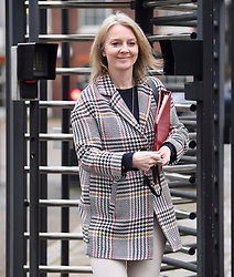 © Licensed to London News Pictures. 05/02/2019. London, UK. Chief Secretary to the Treasury LIZ TRUSS leaves Downing Street via a back entrance following a cabinet meeting. British PM Theresa May is heading to Northern Ireland where she will meet with business leaders to re-assure them on Brexit issues and the EU withdrawal agreement. Photo credit: Ben Cawthra/LNP
