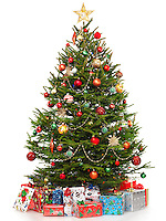 Beautiful decorated Christmas tree with colorful wrapped gifts under it. Isolated on white background.