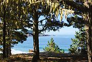 Scenic Mendocino Coast