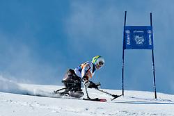 FORSTER Anna-Lena, GER, Super G, 2013 IPC Alpine Skiing World Championships, La Molina, Spain