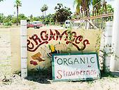 Todos Santos - All Organics