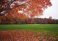 Autumn colors at the Great lawn in Central park, New York City