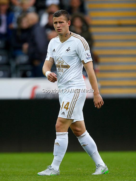 Swansea City's Franck Tabanou