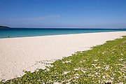 Miyako-jima. Maehama - Japan's most beautiful beach.