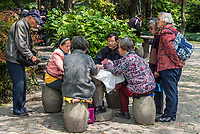 Shanghai, China - April 7, 2013: old people playing chinese cards at the city of Shanghai in China on april 7th, 2013