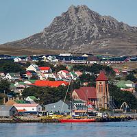 South Georgia & the Falklands