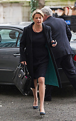 © London News Pictures. 09/02/2013 . London, UK. Fiona Dawson, President of The Institute of Grocery Distributors  arriving at the Department for the Environment, Food and Rural Affairs in London where Secretary of State for Environment, Food and Rural Affairs, OWEN PATERSON is holding a summit to discuss the unfolding scandal over horsemeat being found in various products.. Photo credit : Ben Cawthra/LNP