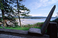 Driftwood bench overlooking the beach, Hornby Island, BC