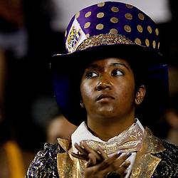 September 10, 2011; Baton Rouge, LA, USA;  A LSU Tigers fan in the stands during the second half against the Northwestern State Demons at Tiger Stadium. LSU defeat Northwestern State 49-3. Mandatory Credit: Derick E. Hingle